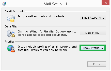 On the Mail Setup, click on Show Profiles option