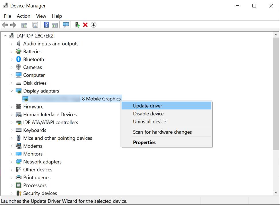 Choose your Graphics Driver's setup